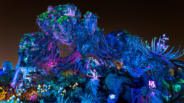 Pandora at Night!