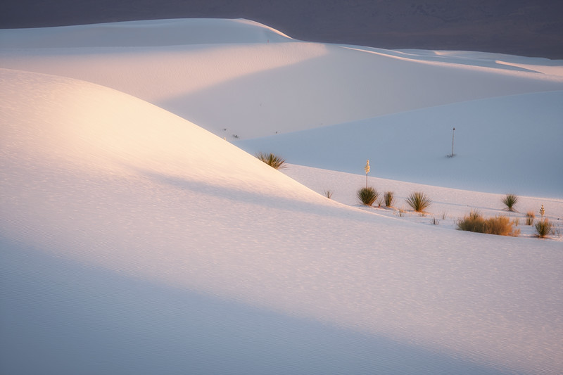 FADING LIGHT OVER THE DUNES