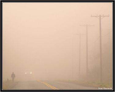 """FOGGY MORNING"", Wrangell, Alaska, USA.-----""MLHAVE RANO""."