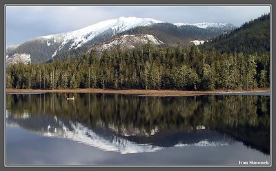 """MARCH 2004 AT PAT`S LAKE"", Wrangell, Alaska, USA.-----""BREZEN 2004 U JEZERA PAT`S"", Wrangell, Aljaska, USA."