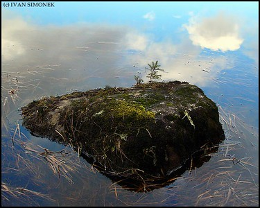 """DESOLATE ISLAND"",actually a 3` wide rock half submerged in Pat`s lake,Wrangell,Alaska,USA."