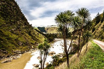 Wairarapa and Manawatu 2013
