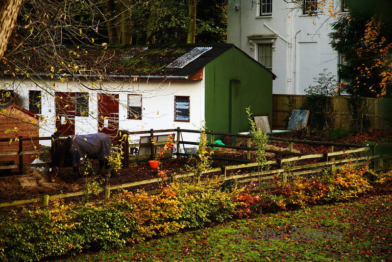 <p>House at Usk, Wales, UK</p>