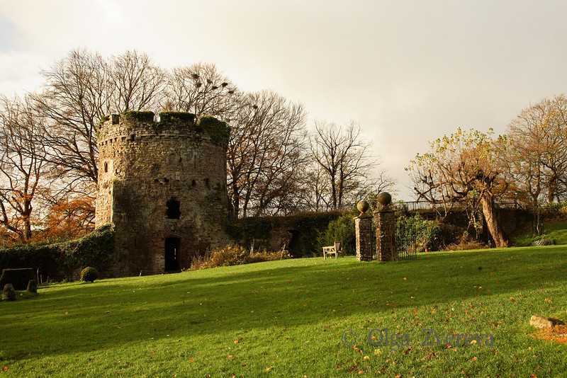 <p>Usk Castle, Usk, Wales, UK</p> <p>Usk Castle is a castle site in the town of Usk in central Monmouthshire, south east Wales, United Kingdom.</p>
