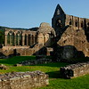 """Lines Written a Few Miles Above Tintern Abbey"" was published in ""Lyrical Ballads"" in 1798."