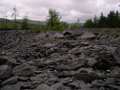 Snowdonia 2005