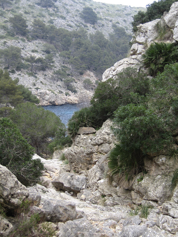 First sighting of Cala en Gossalba