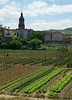 Big allotment complex outside the town. Very common in northern Spain.