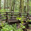 Nice bridge on Wallace Falls trail