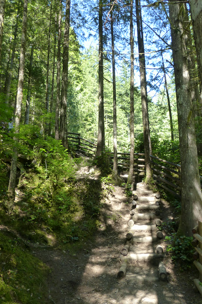 We took this trail down to the Lower Wallace Falls