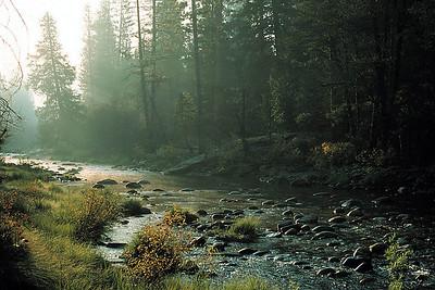 Morning on the Merced River, Yosemite National Park