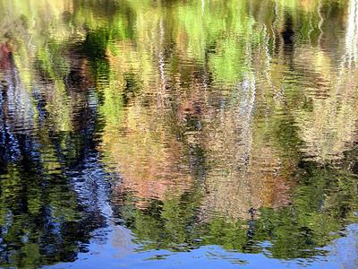 Monet at Burke Lake, VA