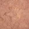 One of several dinosaur footprints found in Warner Valley.  I'm sure it was a very interesting period of time 65+ millions years ago.