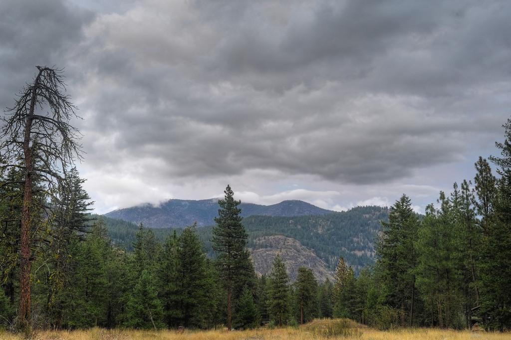 Freestone Inn Clouds