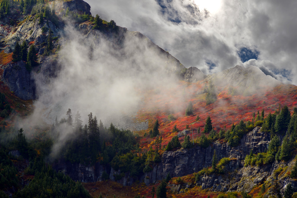 Autumn at Mount Rainier National Park