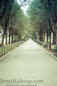 A tree lined walking trail on the National Mall