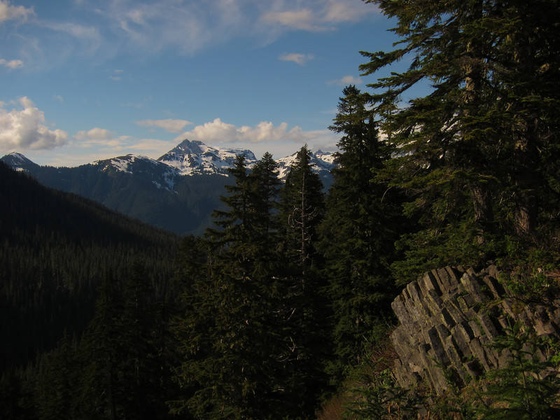Bev and I went to Washington for a couple weeks in late June-early July, 2013. One afternoon we drove up the Mt. Baker highway. Here's Mt. Sefrit and some columnar basalt.