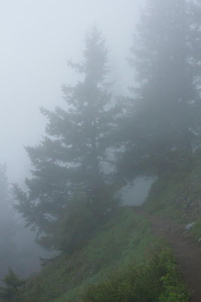 The hike up to Mt. Townsend.