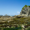 Rialto Beach - We walked out to the Hole in the Wall and played in tide pools.