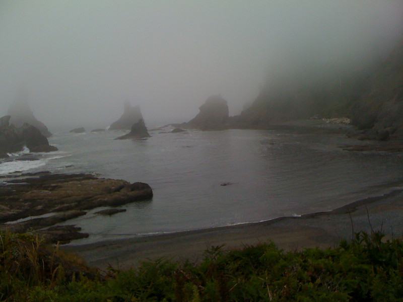 The mist rolled in.