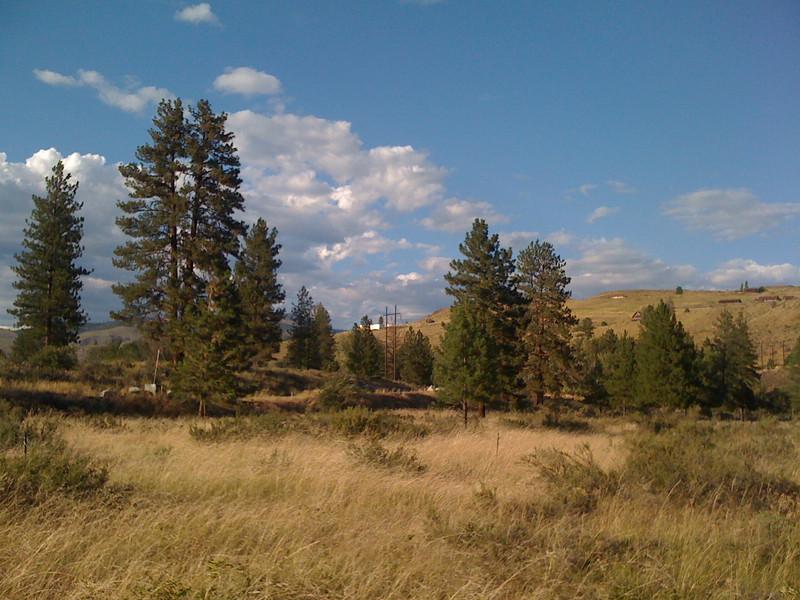 A prairie walk in Winthrop.