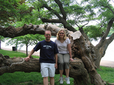 Rick and Kirsten with a gnarly tree at the tidal basin