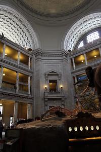 Main hall at the Museum of Natural History.