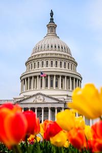 20190416_Washington_DC-37196