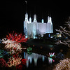 MORMON TEMPLE GARDEN OF LIGHTS