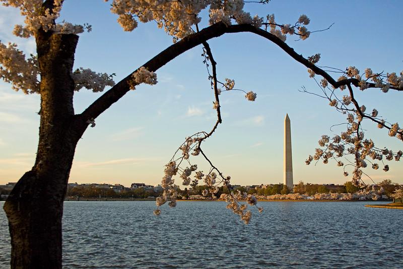 Monumental Spring