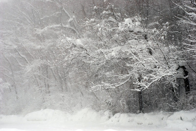 Blizzard Feb 10_Bethesda2
