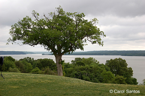 View at Mt. Vernon