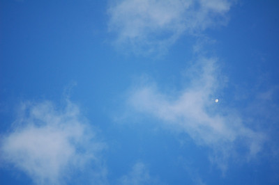 A balloon flies by and finally affirms my staring at the sky for hours just waiting for some action.