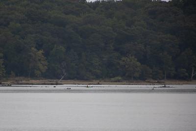 Mallows Bay. Potomac River.