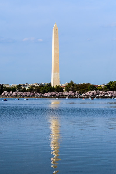 Washington Monument - Tidal basin with boats and Cherry Blossoms