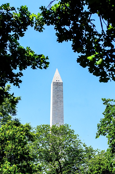 Washington Monument - View of the Monumentin a blue sky framed by trees.