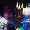 Mormon temple at Christmas.