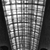 The Glass Ceiling - Museum Of Natural History