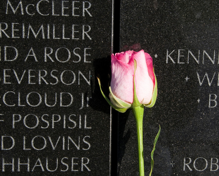 Rose placed in front of the wall at the Vietnam Veteran's Memorial