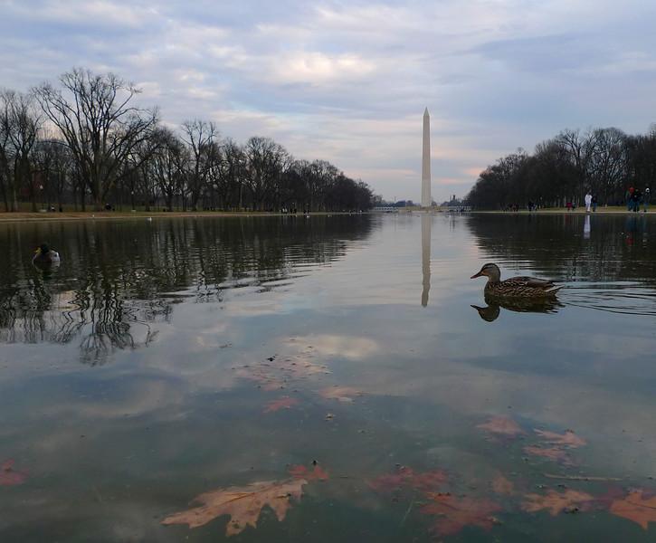 """""""Washington Monument"""""""