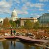 U.S. Botanic Garden Conservatory and U.S. Capitol Bldg