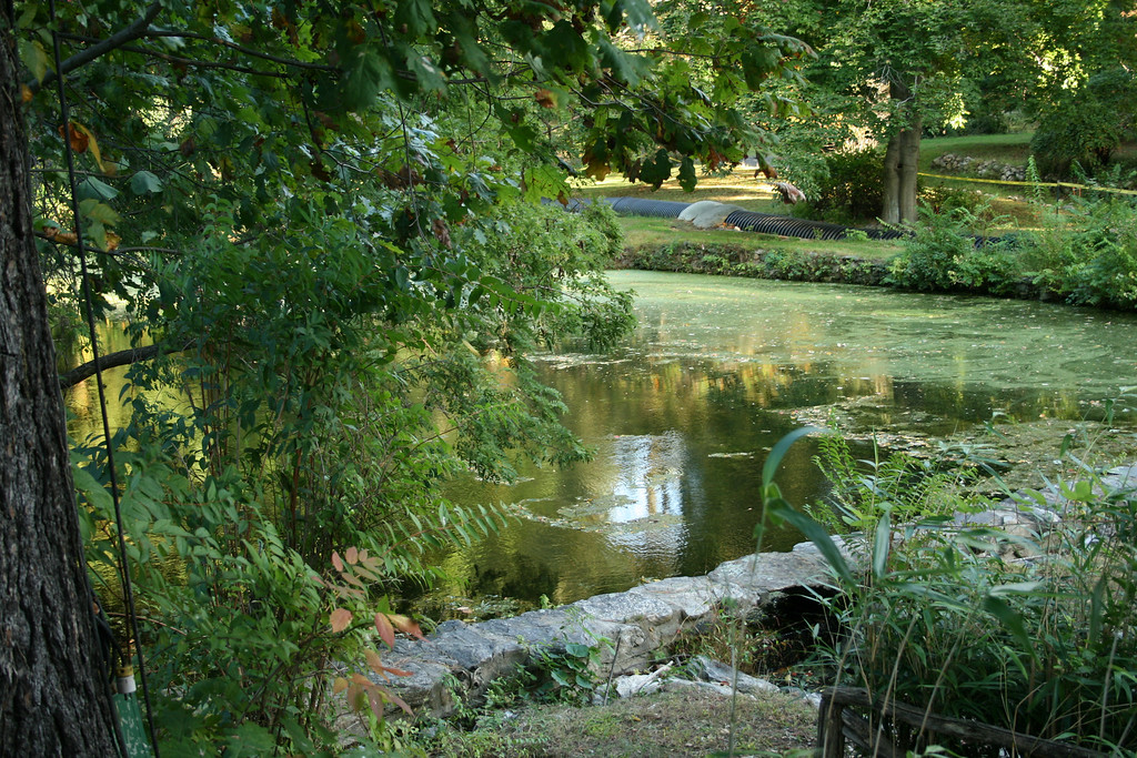 This was a very picturesque pond located by the entrance to the Washington Irving property.