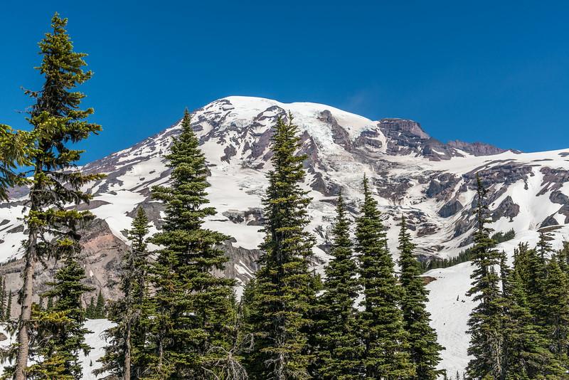 Mount Rainier. Altavista, Paradise, Mount Rainier National Park