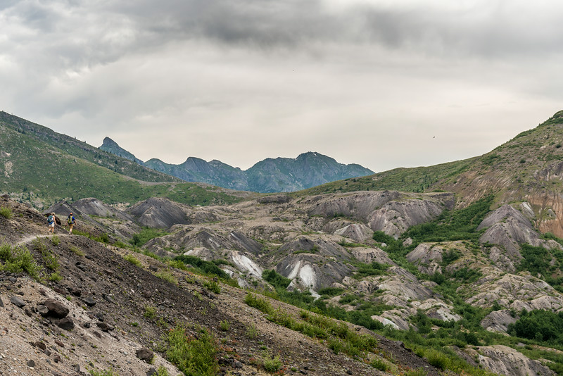 On Johnston Ridge