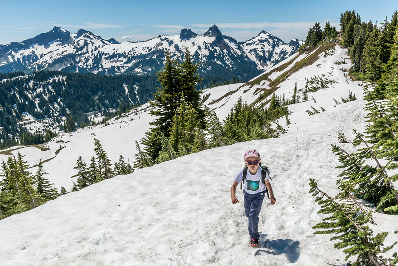 On the Skyline Trail above Altavista. The Tatoosh Range in the background. Paradise, Mount Rainier National Park