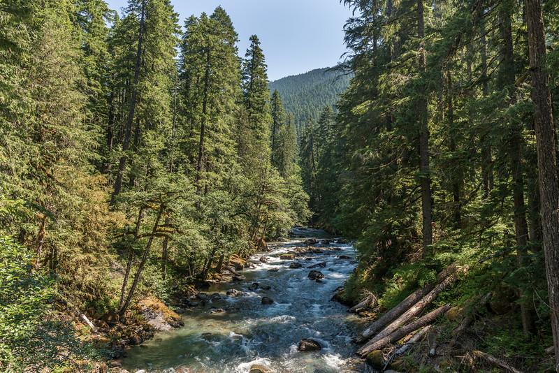 Ohanapecosh River, Mount Rainier National Park