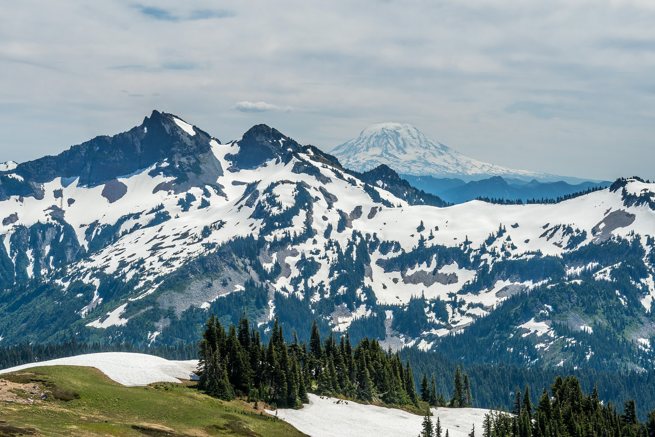Mount Adams (3743m) from the lower slopes of Mount Rainier. Paradise, Mount Rainier National Park