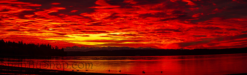 Brilliant Sunset over the Pacific Northwest in Red Tones