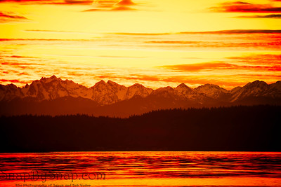 Brilliant Sunset over the Pacific Northwest with Evergreens in Silhouette with Warm Tones.