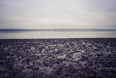 Empty Coast